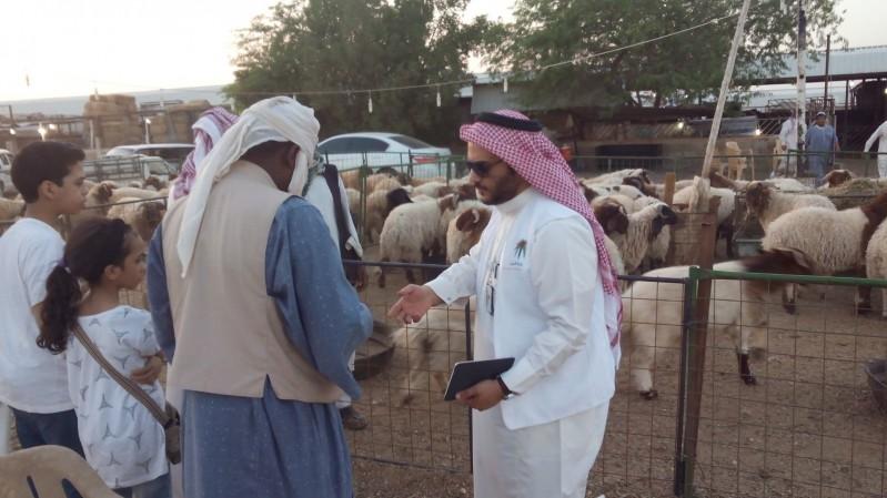 أسواق-ماشية-الرياض (1)