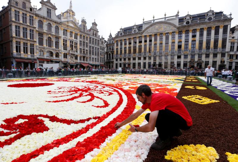 أكبر سجاد الزهور في العالم1