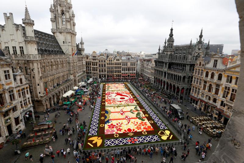 أكبر سجاد الزهور في العالم3