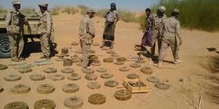 الجيش اليمني يقبض على فريق تابع لميليشيا الحوثي يقوم بزراعة الألغام - المواطن