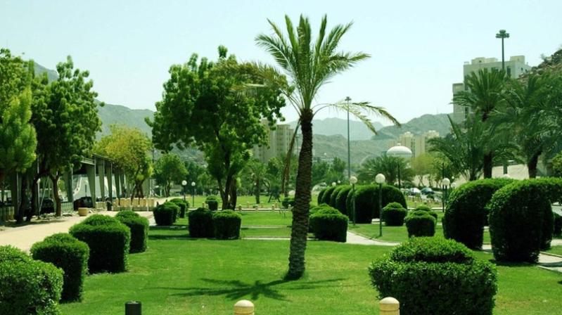 أمانة مكة المكرمة تبدأ تشغيل الإنترنت مجاناً في الحدائق العامة1