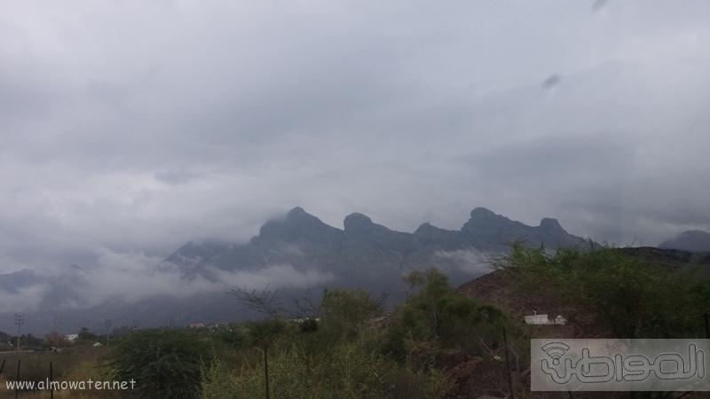 أمطار أضم (1)