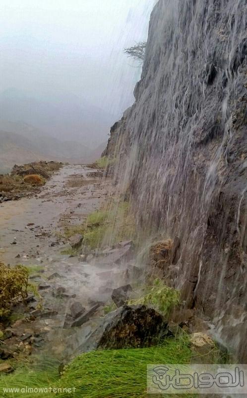 أمطار أضم (10)
