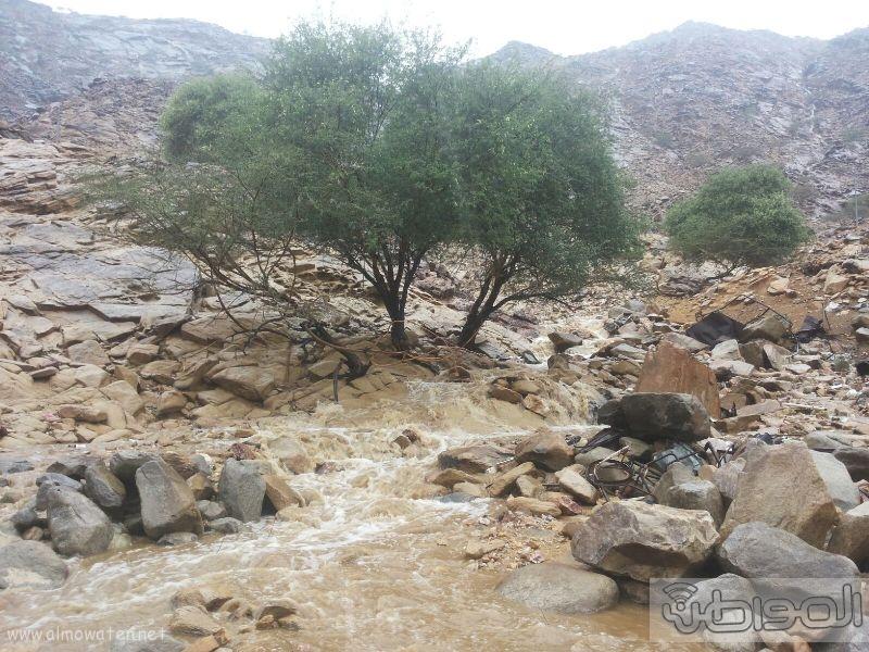 أمطار أضم (12)