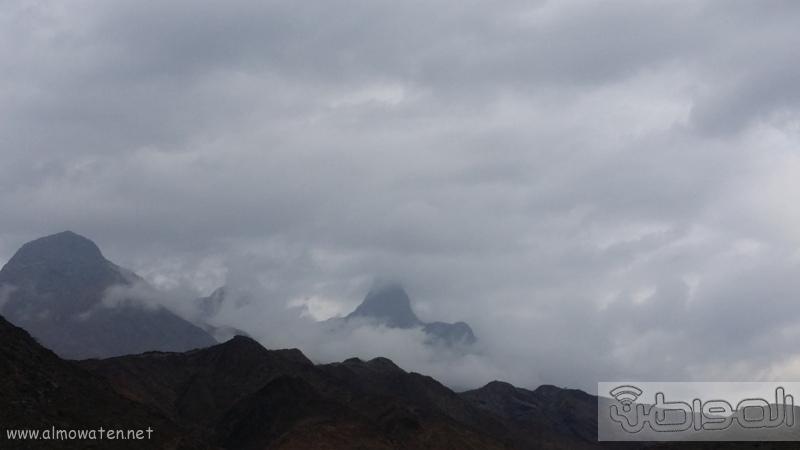 أمطار أضم (4)