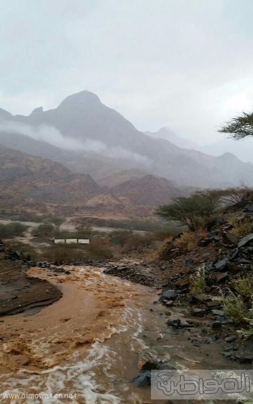 أمطار أضم (7)