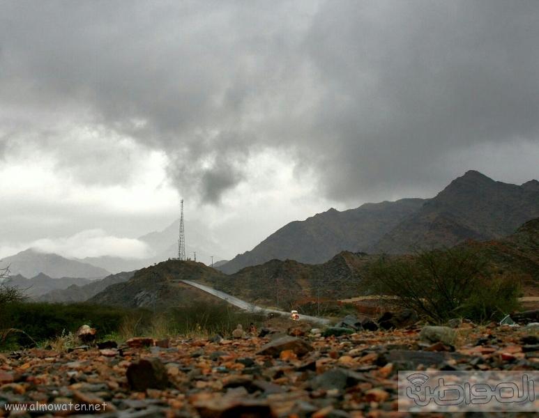 أمطار أضم (9)