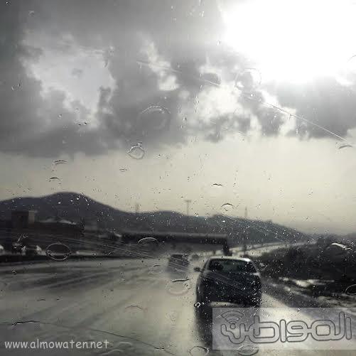 أمطار الجمعة تكسو جبال أبها بالخضرة (854183080) 
