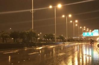 طقس الرياض .. أمطار رعدية ورياح حتى هذا الموعد - المواطن
