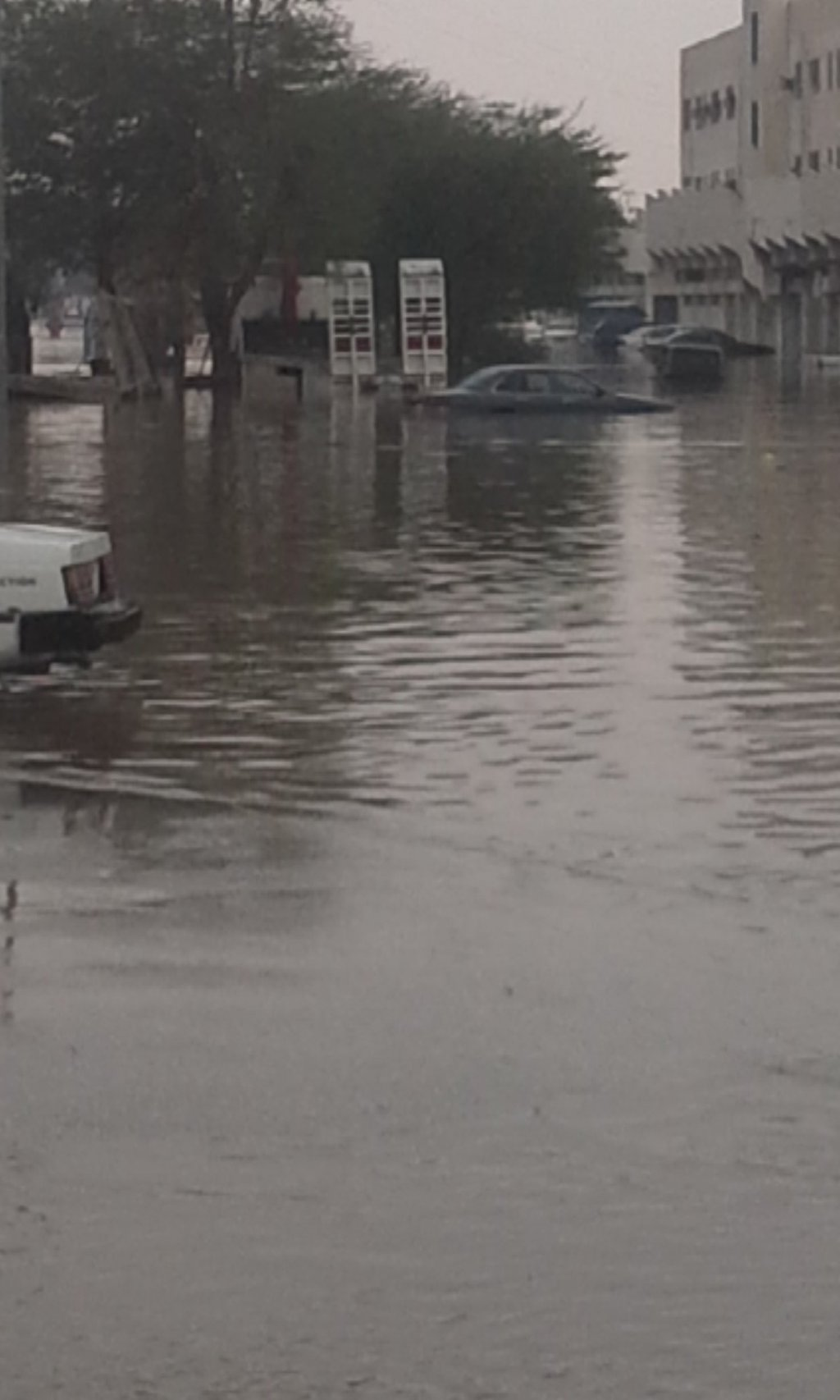 أمطار #بريدة بين ساخر ومطالب بمحاسبة الفساد (7)