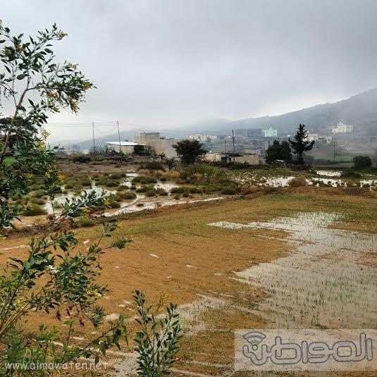 أمطار بلسمر بـ #عسير