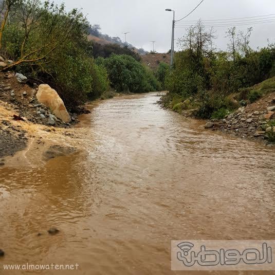 أمطار بلسمر بـ #عسير2
