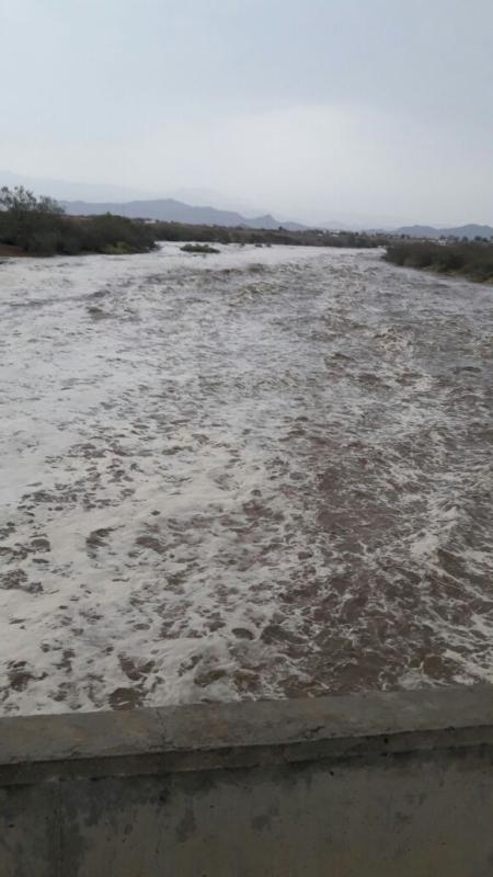 أمطار جازان (31195652) 