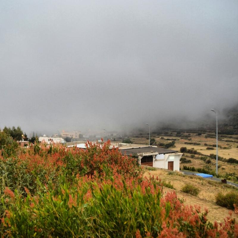 أمطار عسير تكشف جمالها وتجذب الزوّار للمتنزهات (11)