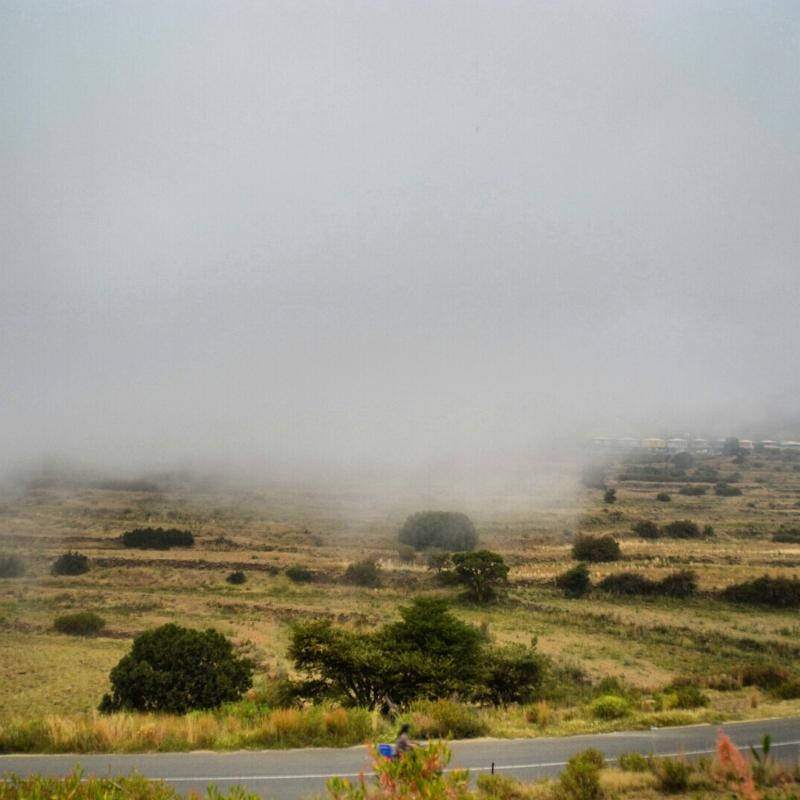 أمطار عسير تكشف جمالها وتجذب الزوّار للمتنزهات (13)