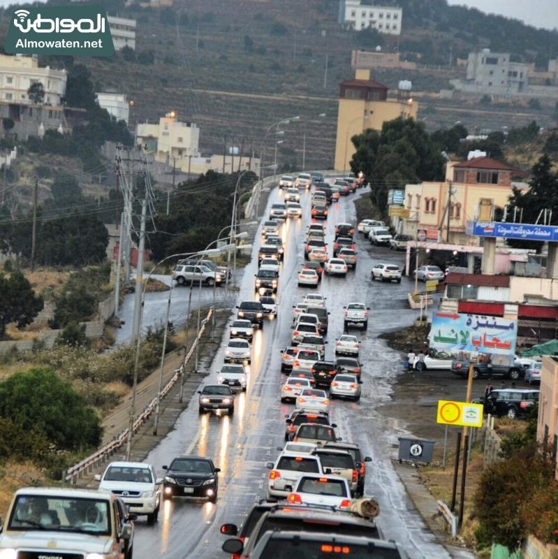 أمطار عسير تكشف جمالها وتجذب الزوّار للمتنزهات (2)