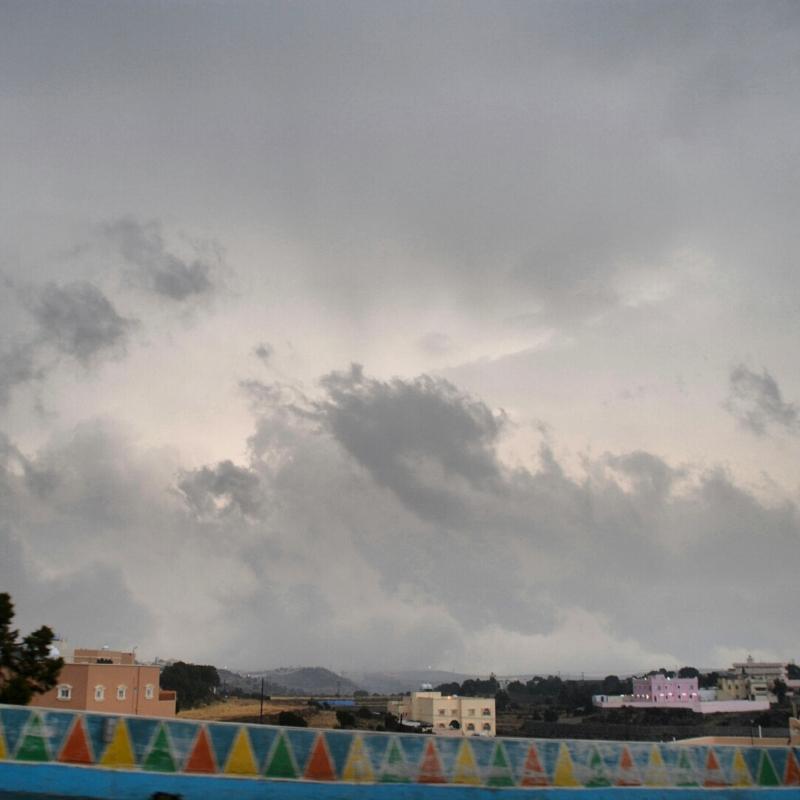 أمطار عسير تكشف جمالها وتجذب الزوّار للمتنزهات (3)
