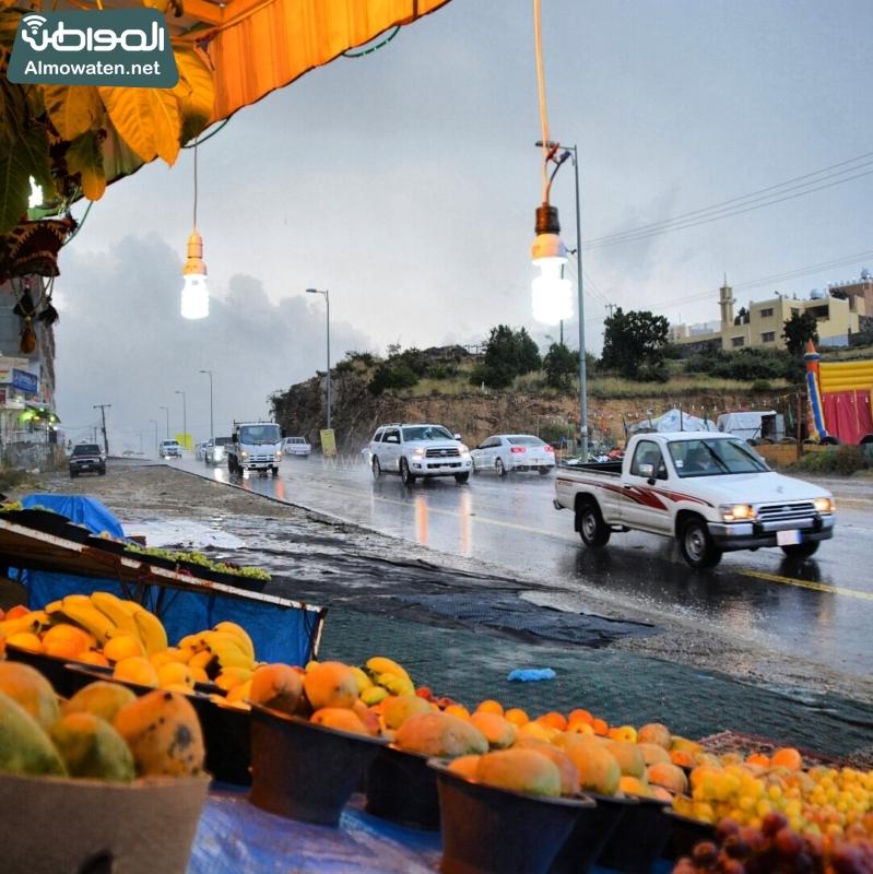 أمطار عسير تكشف جمالها وتجذب الزوّار للمتنزهات (4)