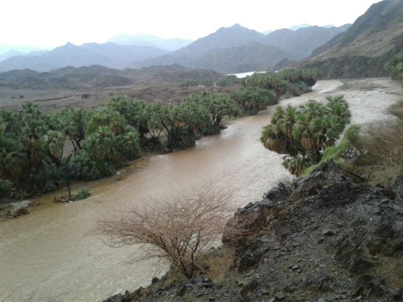 أمطار عسير تكشف جمالها وتجذب الزوّار للمتنزهات (5)