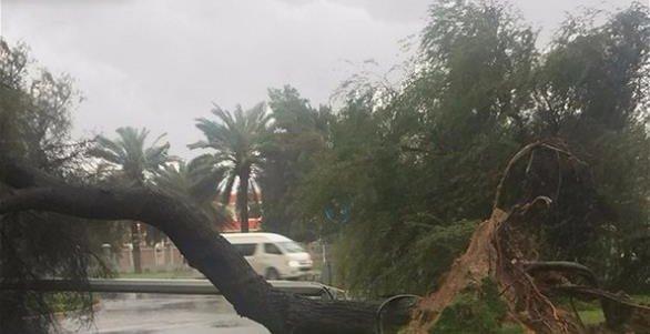 #أمطار_الإمارات تُعلن توقف الحياة بشكل كامل (1)