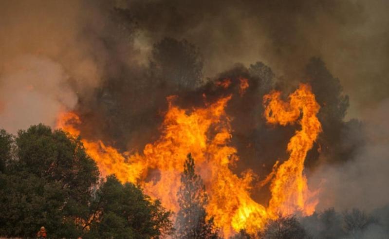 أميركا.. الحرائق التهمت 10 ملايين فدان في 2016