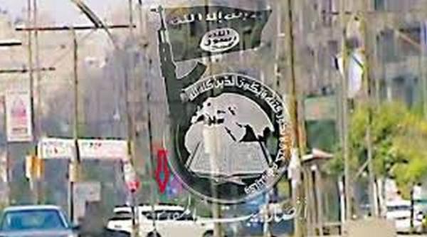 أنصار بيت المقدس بمصر