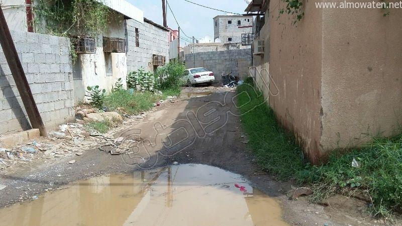 أهالي قامرة #أبو_عريش يستغيثون الرمال والمستنقعات تغرق شوارعنا (1)
