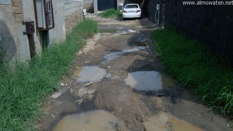 أهالي قامرة #أبو_عريش يستغيثون الرمال والمستنقعات تغرق شوارعنا (10)