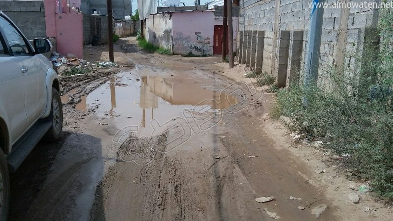 أهالي قامرة #أبو_عريش يستغيثون الرمال والمستنقعات تغرق شوارعنا (4)