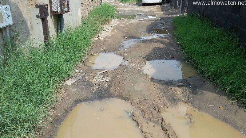 أهالي قامرة #أبو_عريش يستغيثون الرمال والمستنقعات تغرق شوارعنا (6)