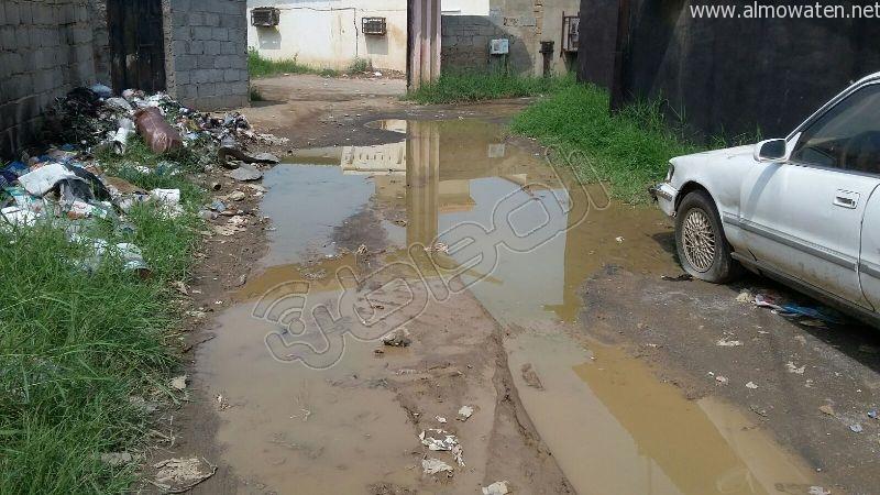 أهالي قامرة #أبو_عريش يستغيثون الرمال والمستنقعات تغرق شوارعنا (9)