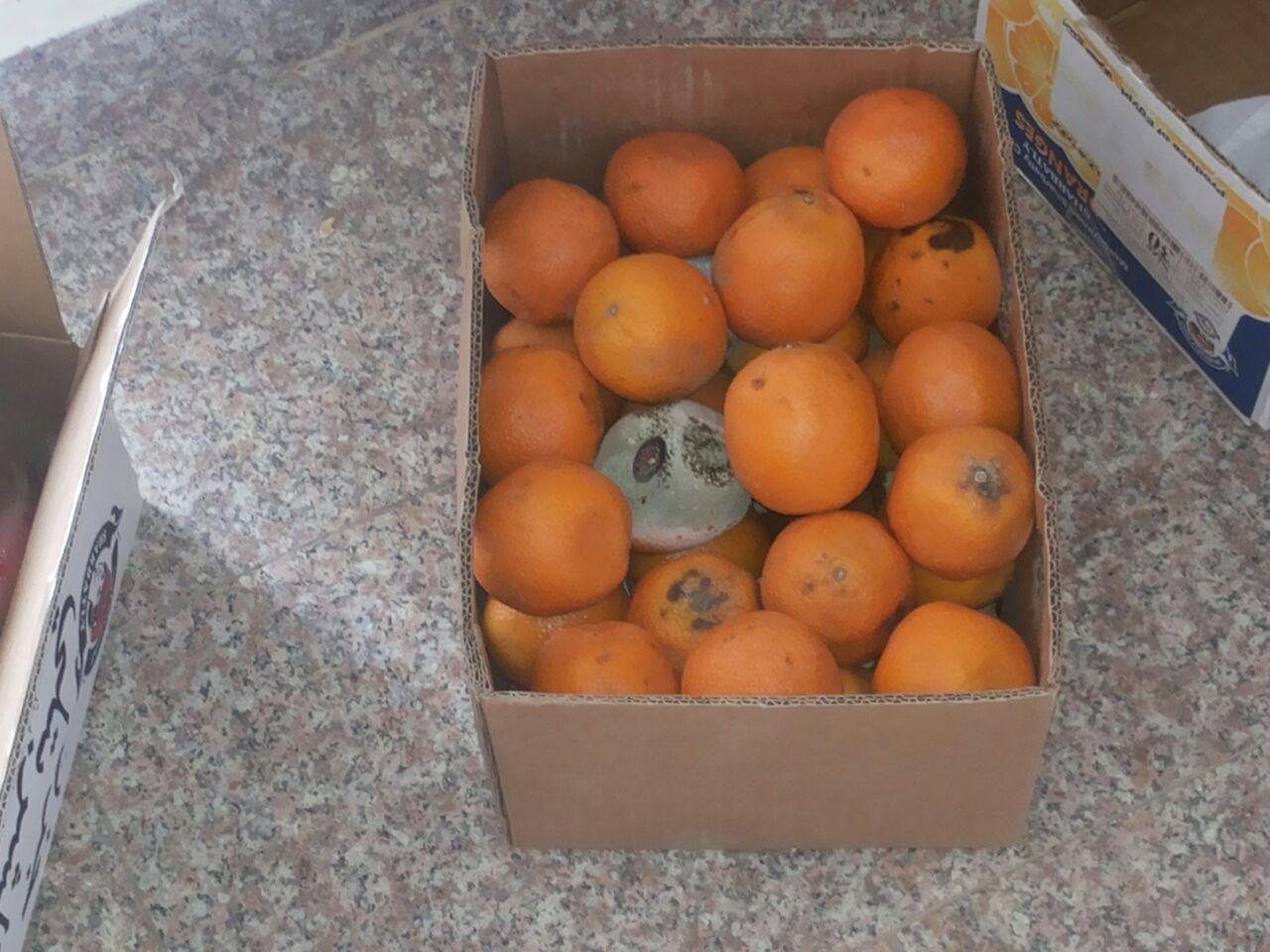 إتلاف 21 كجم مواد غذائية غير صالحة للاستهلاك في بللسمر (6)