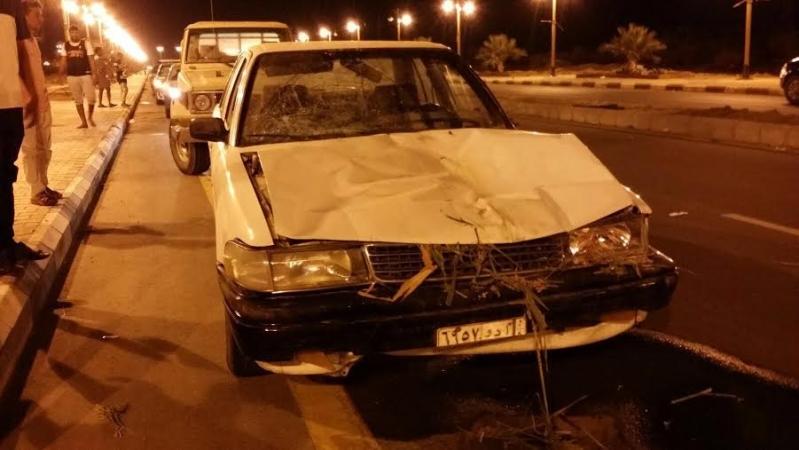 إصابة يمني وابنه ومقتل حمار بحادث دهس 4