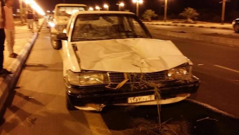 إصابة يمني وابنه ومقتل حمار بحادث دهس