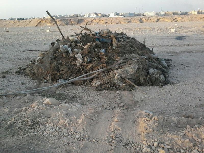 بالصور.. إلقاء مخلفات الأضاحي بمهدية # الرياض - المواطن