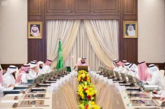 مجلس الشؤون الاقتصادية يناقش عرض المركز الوطني للتخصيص - المواطن