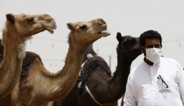A man wearing a mask looks on as he stands in front of camels at a camel market in the village of al-Thamama near Riyadh