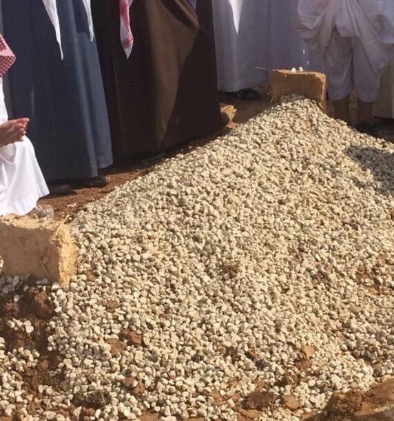 ابو زناد (2)