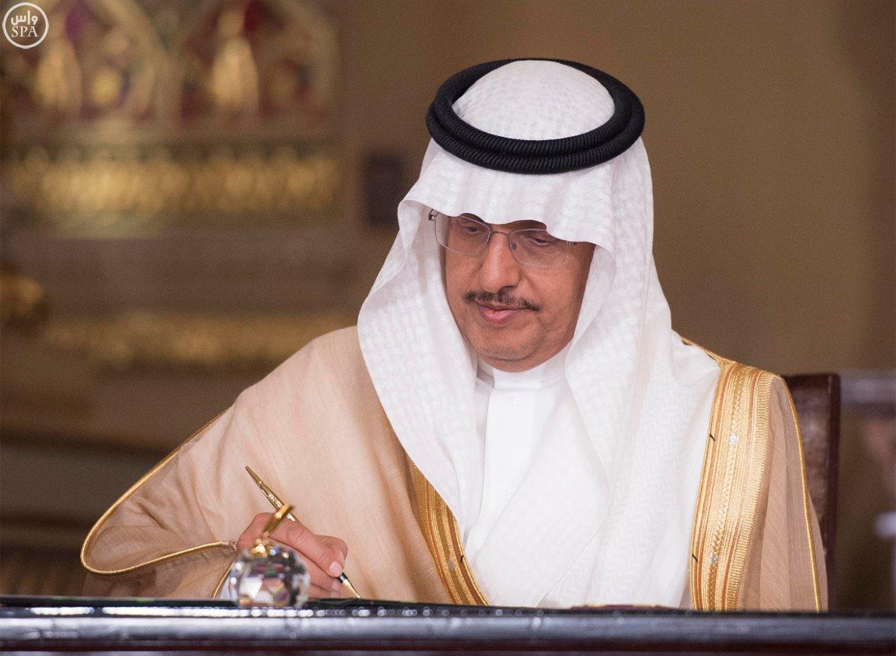 اتفاقية المنطقة الحرة بشمال سيناء اول مشاريع جسر الملك سلمان (3)