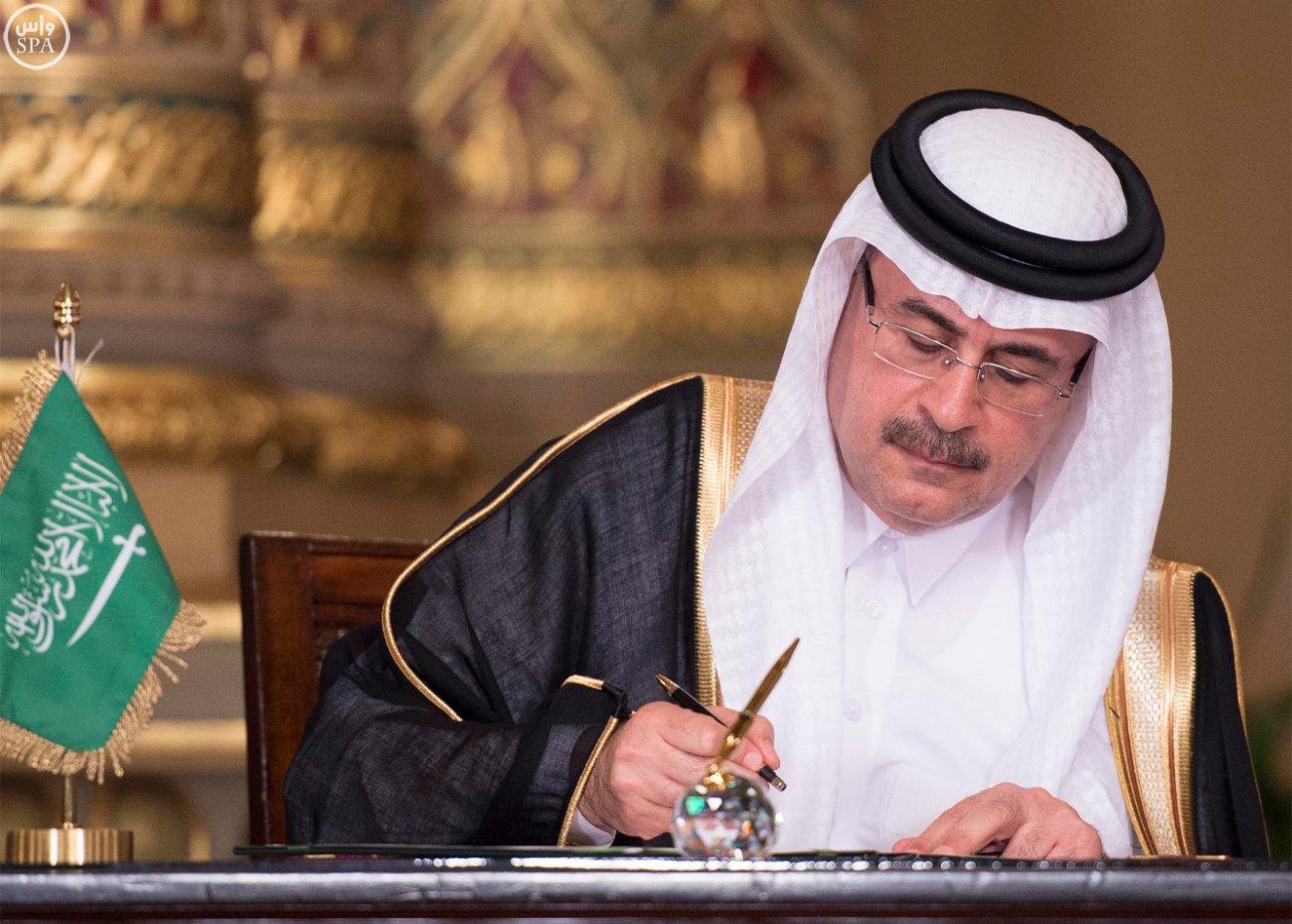 اتفاقية المنطقة الحرة بشمال سيناء اول مشاريع جسر الملك سلمان (5)