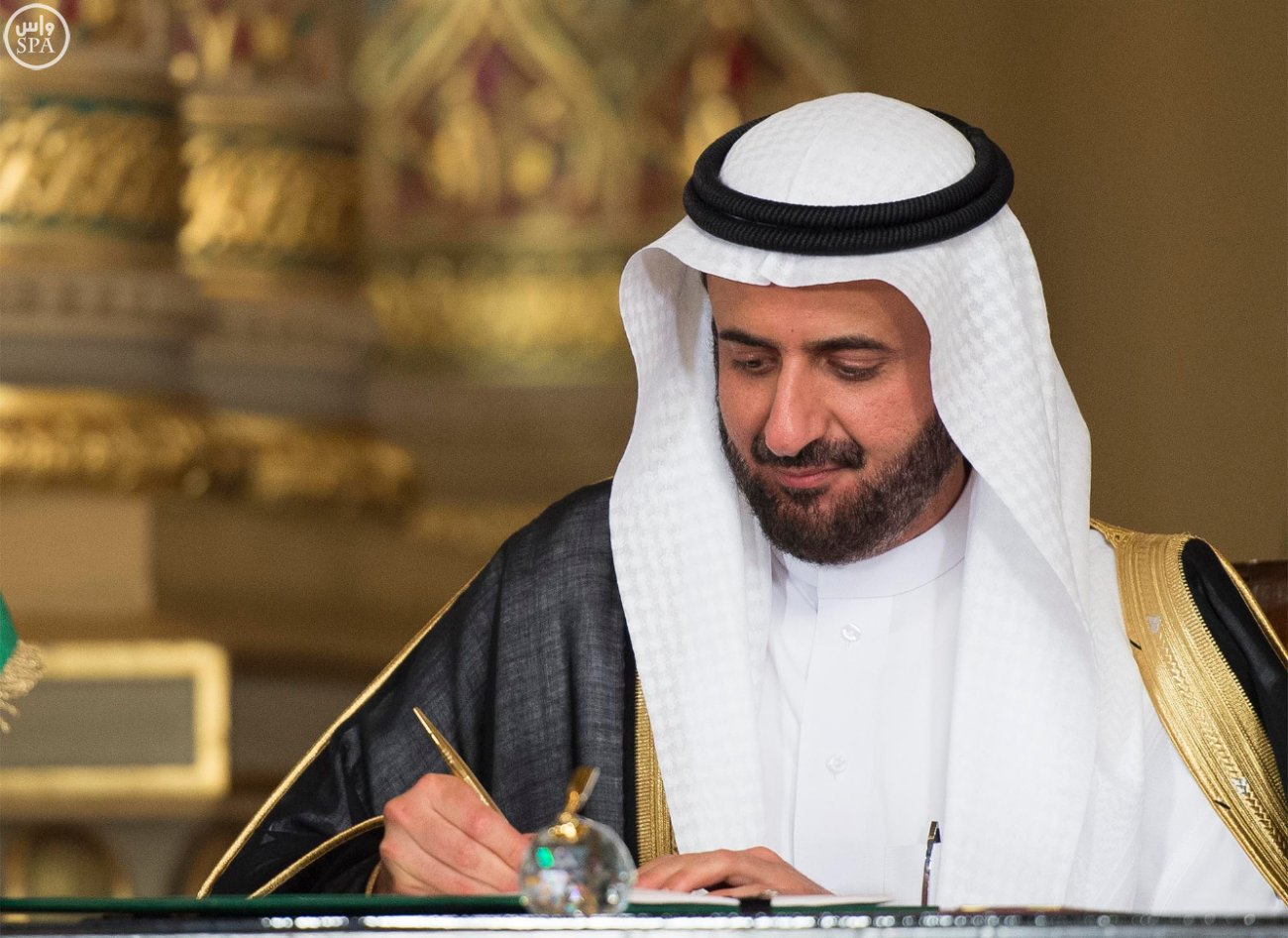 اتفاقية المنطقة الحرة بشمال سيناء اول مشاريع جسر الملك سلمان (6)