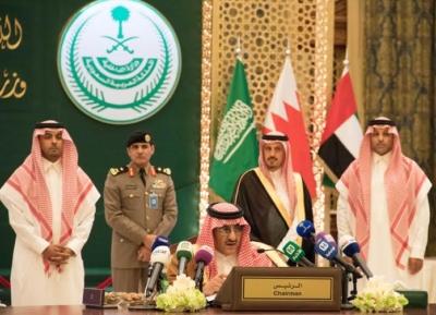 اجتماع وزراء داخليه الخليج (15)