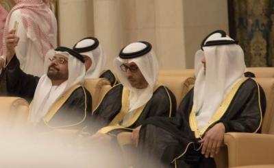 اجتماع وزراء داخليه الخليج (21)