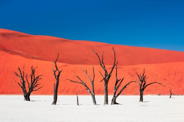 اجمل صور ملتقطة في يناير من مصوري ناشيونال جيوغرافيك (6)