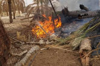 بالصور.. مخلفات الأشجار تسبب احتراق مزرعة بجبة #حائل - المواطن