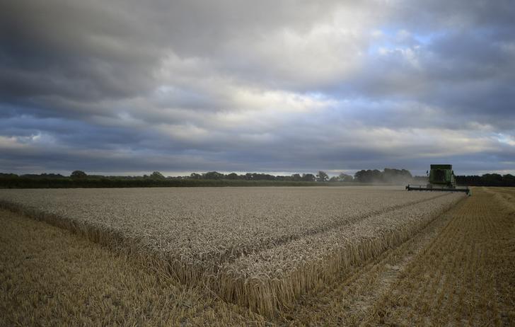 الطلب على الأرض الزراعية في بريطانيا يهبط بشدة في النصف الأول من 2016
