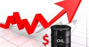 ارتفاع-انتعاش-اسعار-النفط
