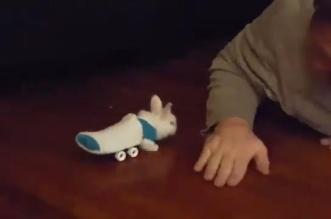 بالفيديو والصور.. مزارع يصنع عجلاً متحركاً لأرنب مشلول - المواطن
