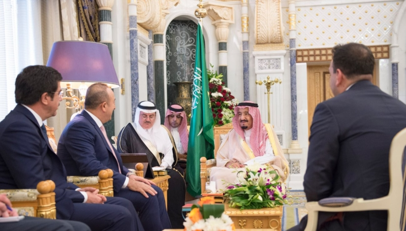 استقبال الملك لوزيي خارجية والاقتصاد التركيين1