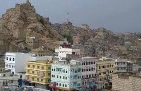 الجيش اليمني يُسقط طائرة إيرانية في البيضاء - المواطن